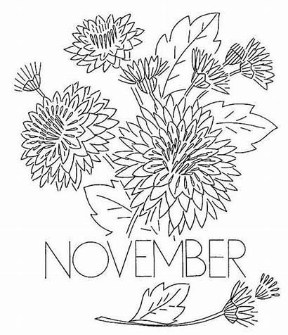 Coloring November Pages Chrysanthemum Flower Printable Flowers