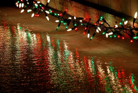 under the christmas lights lights the bridge pictures photos and images for