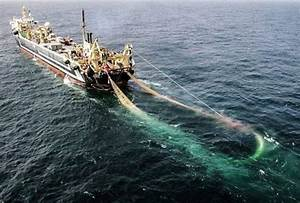 World's second largest super-trawler enters Irish waters ...