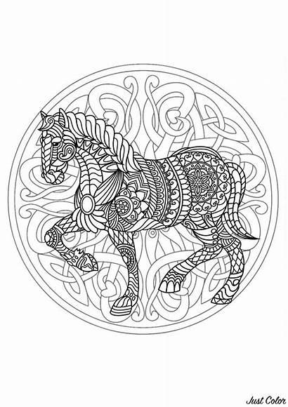 Mandala Horse Difficult Coloring Mandalas Adults Complex