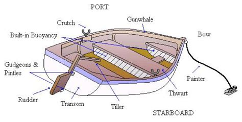 Boat Parts by Parts Of A Rowboat Diagram Parts Of Trees Diagram