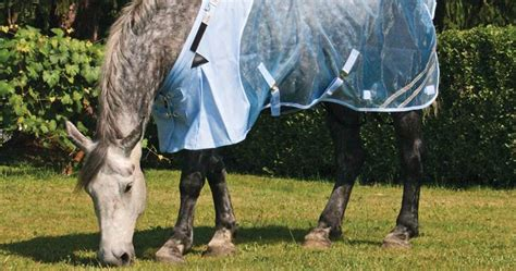 fly sheets horse draft uv protection accessories horses masks