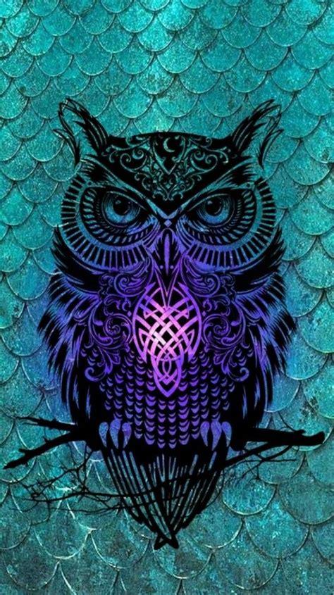 buho hipster wallpapers hipster en  owl wallpaper
