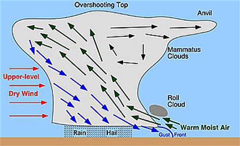 Simple Thunderstorm Diagram by Severe Wx Thunderstorms
