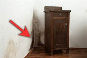 Schwarzer Schimmel In Der Wohnung : schimmel entfernen und vermeiden 10 tipps die wirklich ~ Michelbontemps.com Haus und Dekorationen