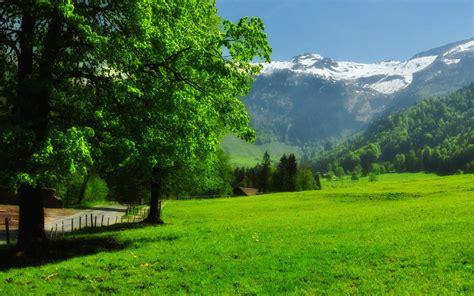 bureau paysage fonds d 39 écran paysage suisse maximumwallhd