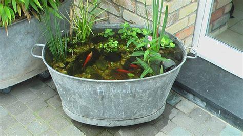 d 233 co jardin avec bassine zinc