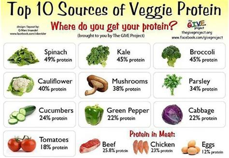 can low vitamin d cause hair top 48 high protein foods you should include in your diet protein rich foods high protein