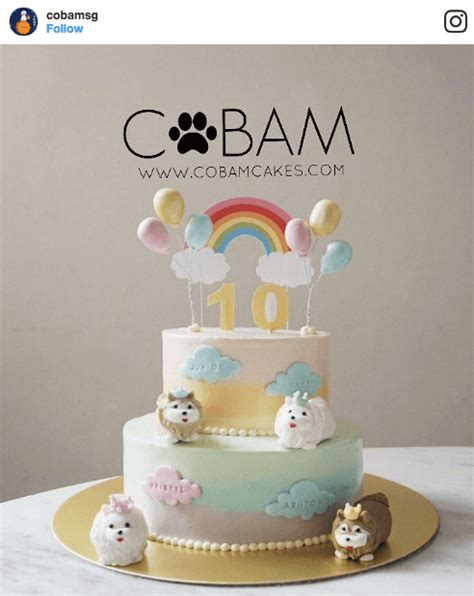 dog bakeries  buy  dogs  birthday cake