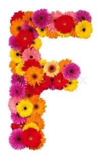 sunflower corsage letter f flower alphabet isolated on white background