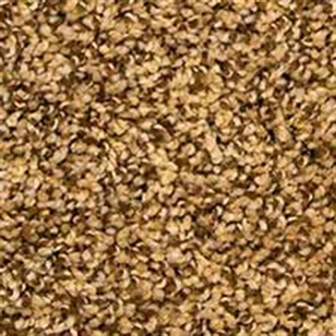 Pet Urine Resistant Carpet by Buy Mohawk Permanent Attraction Carpet