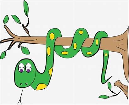 Snake Tree Clipart Background Brown Cartoon Transparent