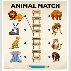 Animals Match  Interactive Worksheet