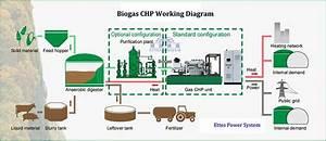 Biogas Generator Methane Gas Generator Landfill Gas