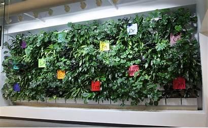 Indoor Living Wall Walls Office Interior Corporate
