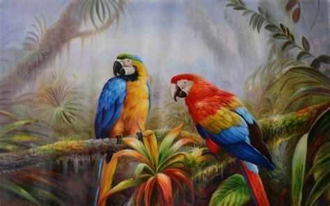 Jungle Parrot Exotic Birds Pictures Download Hd Wallpaper ...