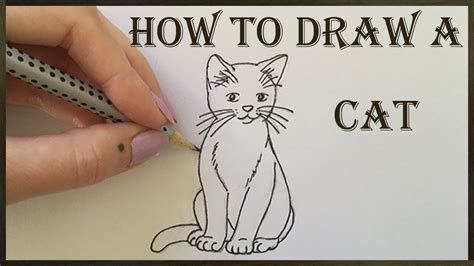 cat drawing   draw  cat youtube