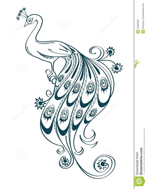 awesome peacock simple outline images ideas