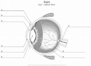 Eye Diagrams At Tusky Valley High School