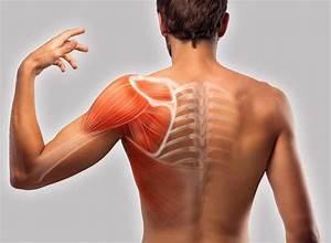 Ways To Relieve Pain In Between Your Shoulder Blades