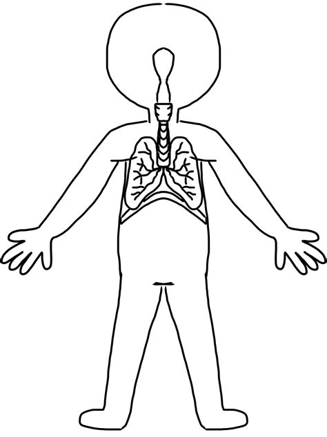 body outline clipart   clip art