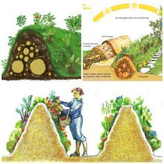 1000 ideas about permaculture garden on