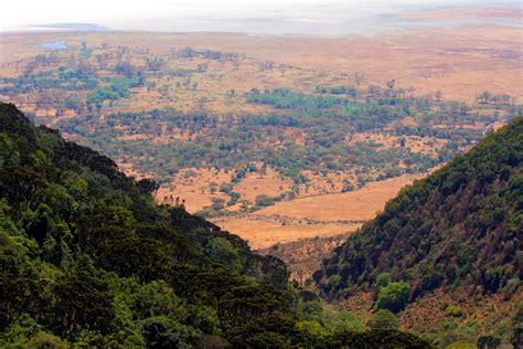 Ngorongoro Crater (conservation Area) Pictures, Africa