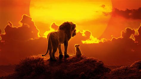 lion king  wallpapers hd wallpapers id
