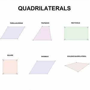 What are the types of quadrilaterals?  Quadrilateral