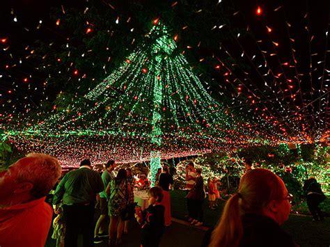 richards family reclaim christmas lights guinness world