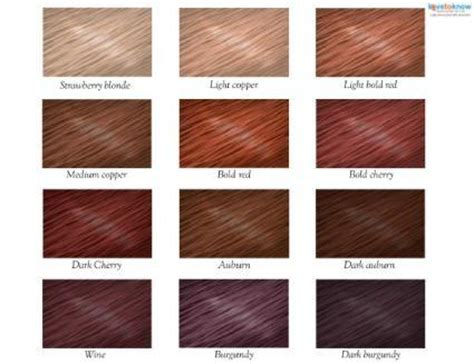 red hair color chart eberniecom