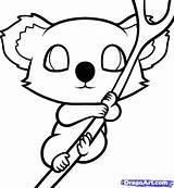 Koala Coloring Pages Getdrawings Bear sketch template