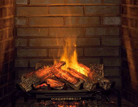 Electric Log Fireplace Heater dimplex 28 inch opti myst electric fireplace insert log