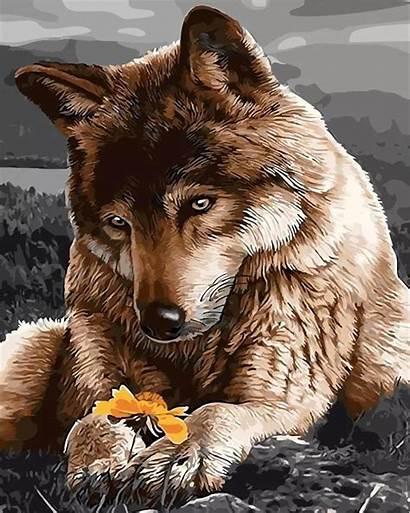 Wolf Sad Paint Animals Numbers