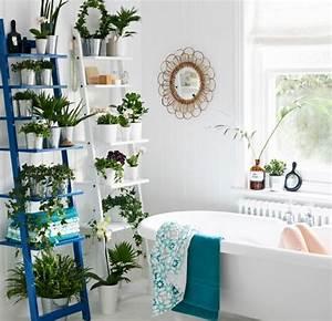 Wandregale Fürs Bad : pflanzen auf hj lmaren wandregal in verschiedenen farben im badezimmer zwei wandregale ~ Markanthonyermac.com Haus und Dekorationen