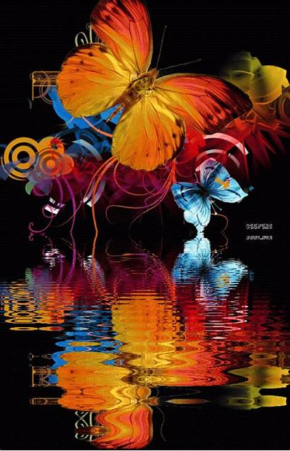 Butterfly Animated Gifs Butterflies Reflection Water Im