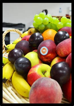 livraison de fruits au bureau livraison de fruits au bureau alex alex