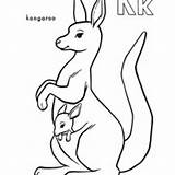 Kangaroo Coloring Baby Carrying Netart Pouch Drawing Animals sketch template
