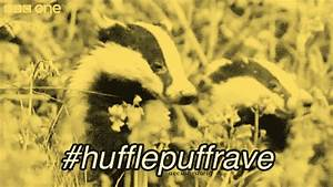 Hufflepuffrave GIFs - Find & Share on GIPHY