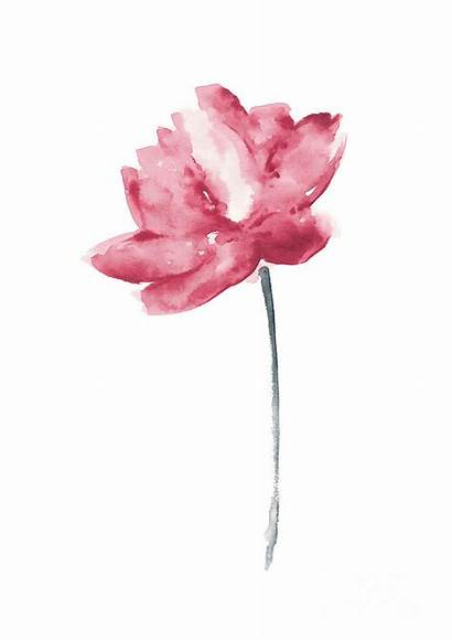 Lotus Watercolor Flower Painting Wall Chic Coral