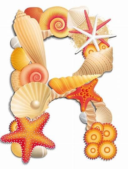 Beach Alphabet Clipart Letters Sea Shells Letter
