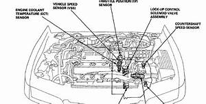 1994 Honda Civic Suspension Diagram Html