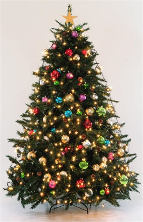 picture of real christmas trees decorated pictures of decorated trees slideshow