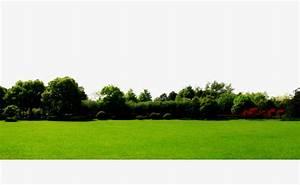 Green Grass Background, Grass Clipart, Green, Lawn PNG ...