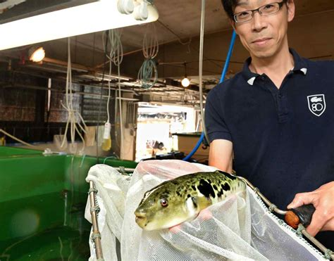 New tech allows scientists to develop better fishery ...
