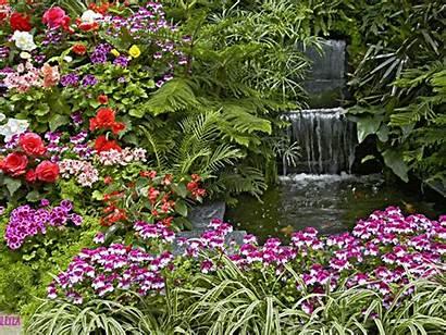 Garden Animated Waterfall Flower Flowers Backyard Background
