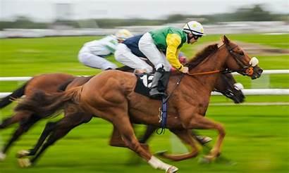 Racing Horse Race Jockeys Saudi Cup Competitions