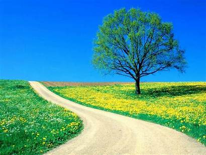 Nature Wallpapers Backgrounds Website Tag