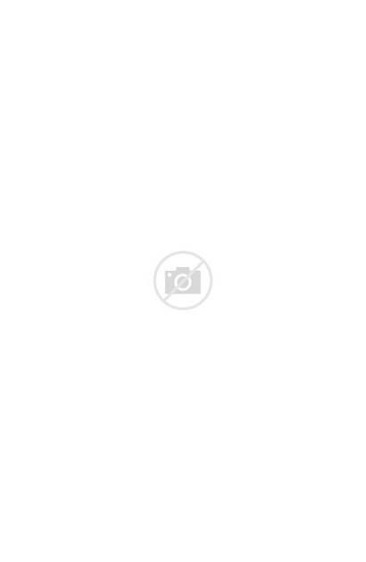 Dior Sunglasses Cat Eye Spirit 52mm