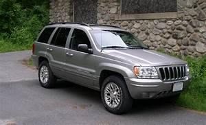 1995 Jeep Grand Cherokee Fuse Box Diagram  1995  Free Engine Image For User Manual Download